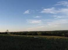 Big Sky Sheep