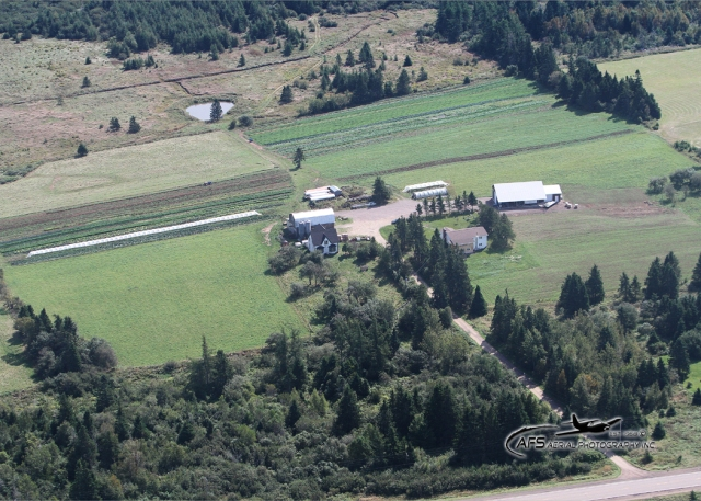 September 2012 - A bird's eye view
