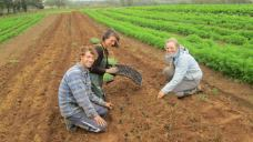 Week 40 - More Onions! Jeremie, Ruth and Emilie.