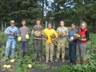 Week 40- Squash harvest