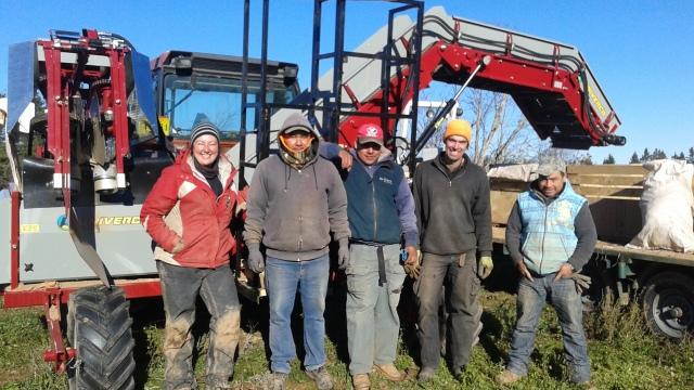 20181023_crew carrot harvester